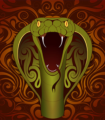 Kígyó kínai asztrológia