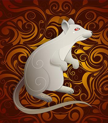 Patkány kínai asztrológia